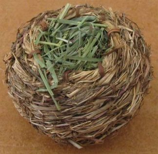 Busy Bunny - Grass Bunny Ball