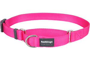 red dingo martingale Hot Pink