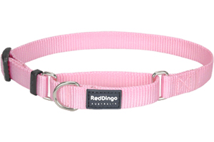 red dingo martingale Pink