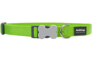 red dingo bucklebone - limegreen