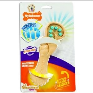 nylabone dental chew SQUIRREL BRISTLES BRUSH